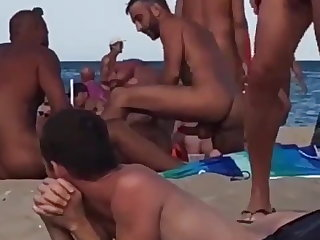 bareback (gay), amateur (gay), beach (gay), group sex (gay), anal (gay), hd videos