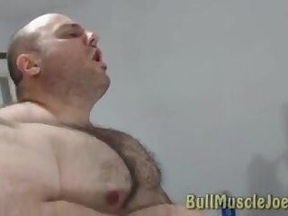 daddy, sexy, bull, muscle, joe, showing