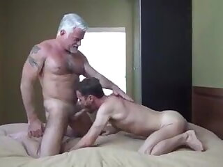 barebacks, dad, and, breeds, son,